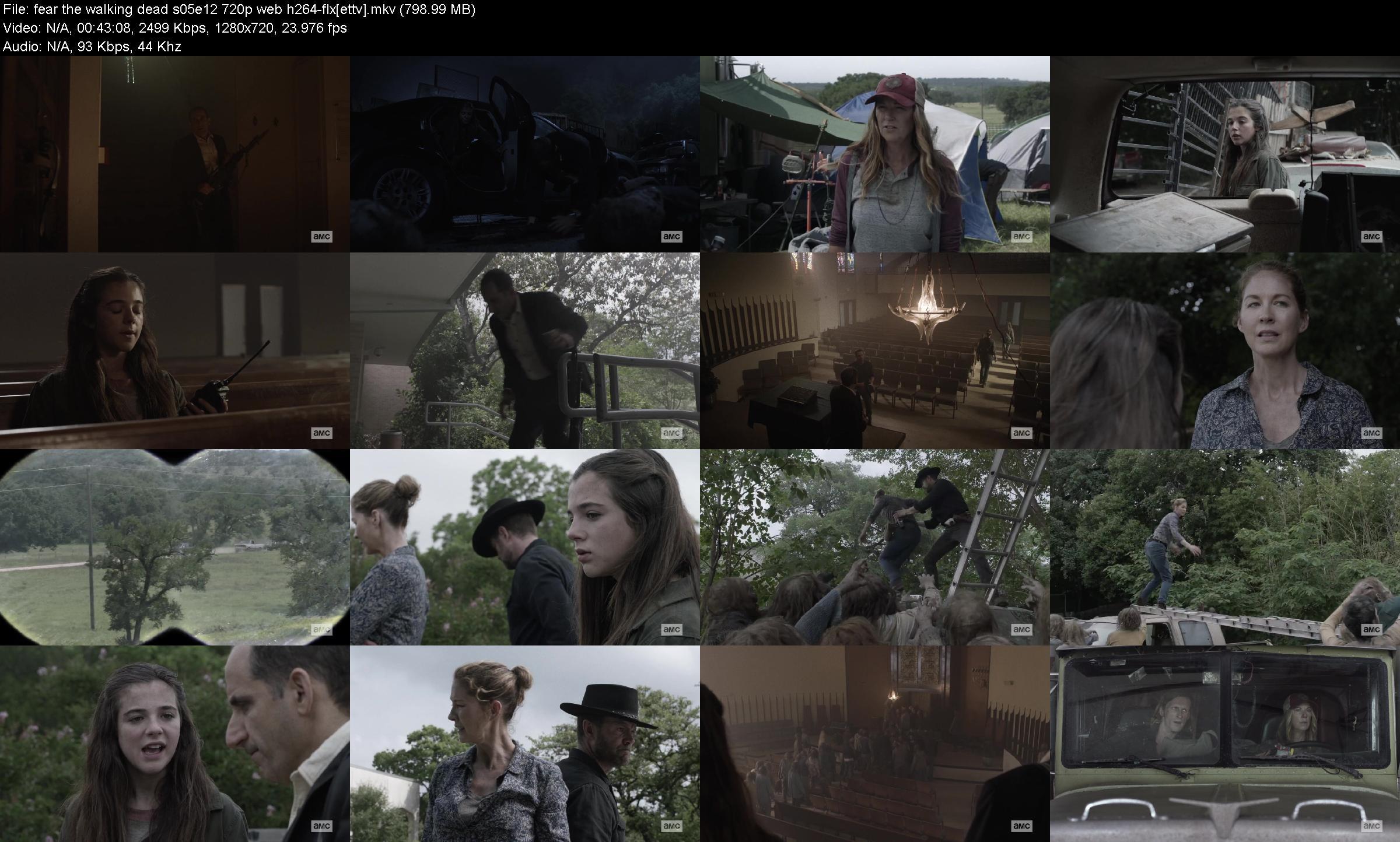 Fear the Walking Dead S05E12 720p WEB H264-FLX
