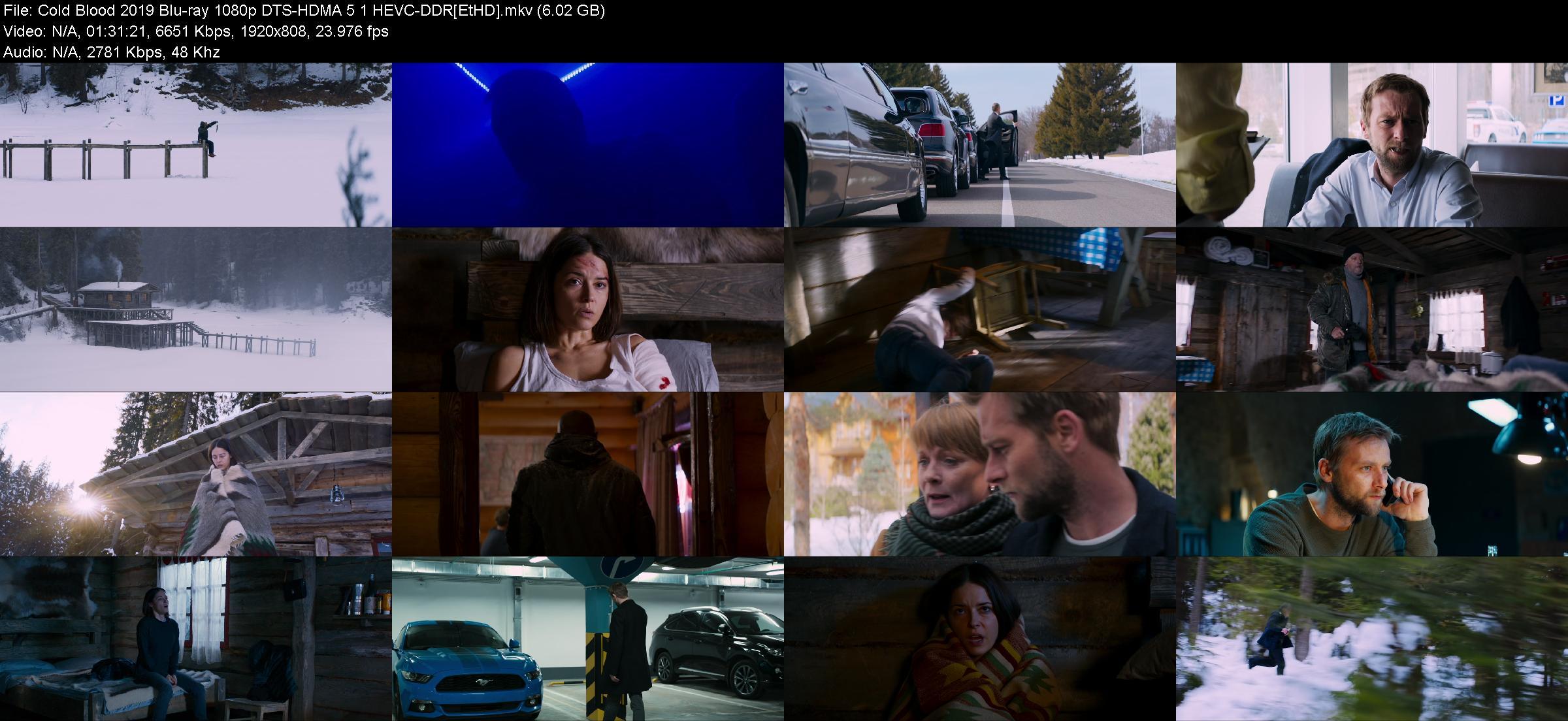 Cold Blood 2019 Blu-ray 1080p DTS-HDMA 5 1 HEVC-DDR