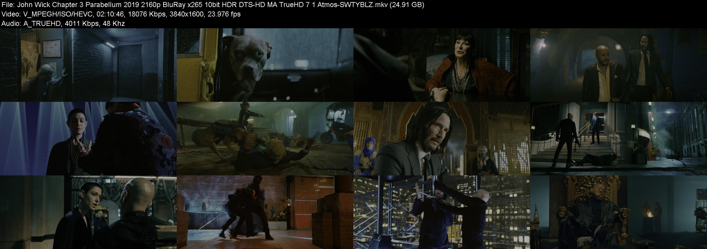 John Wick Chapter 3 Parabellum 2019 2160p BluRay x265 10bit HDR DTS-HD MA TrueHD 7...