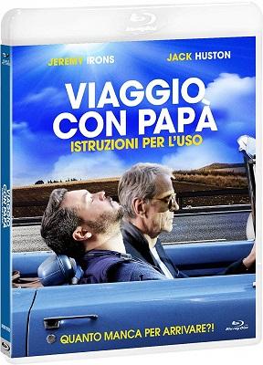 Viaggio Con Papà: Istruzioni Per L'Uso (2018).avi BDRiP XviD AC3 - iTA